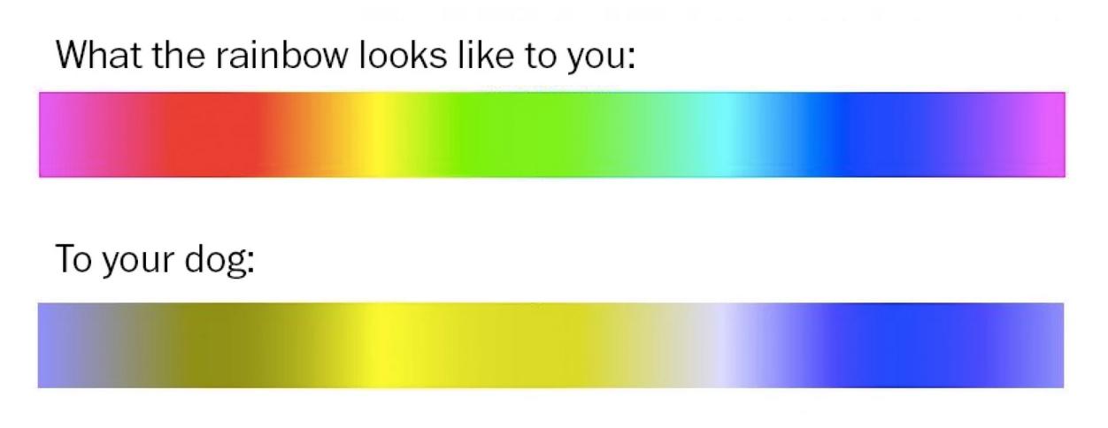 ColorSpectrum